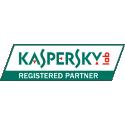 Kaspersky Partner Logo
